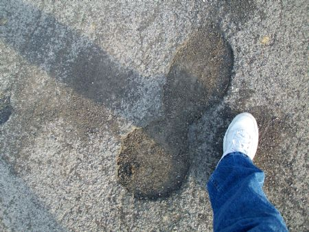 big foot impressions