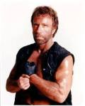 Chuck Norris - As Himself